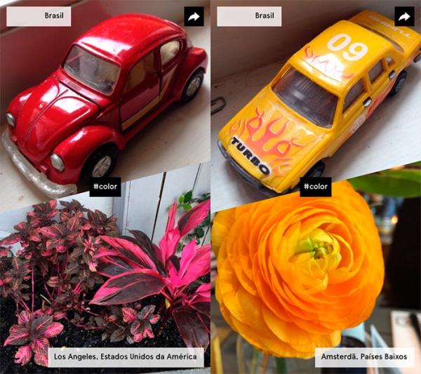 Carros e plantas
