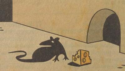91-rato